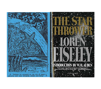 the star thrower essay Grade 9 essay writing topics loren eiseley essays homework help periodic tables king john the star thrower is also the title of a 1978 anthology of eiseleys.